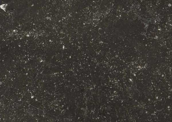 Black stone marble